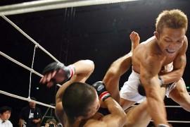 柔術や総合格闘技に有効な筋トレ、ウェイトトレーニングとは??