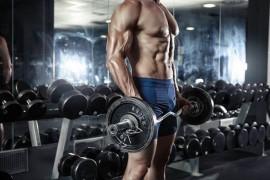 ボディビルダーから学ぶ体型別の筋トレや食事法