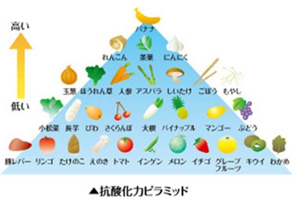抗酸化ピラミッド