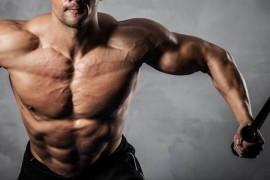 筋トレを始めてから筋肉はどれ位の期間でつくのか?