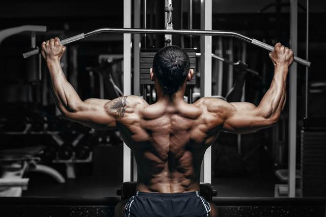 48201168 - athlete muscular bodybuilder training back on simulator in the gym