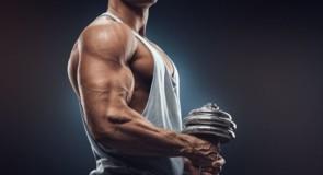 ◆三角筋(肩の筋肉)の効果的な鍛え方、筋トレ5選とストレッチ方法◆