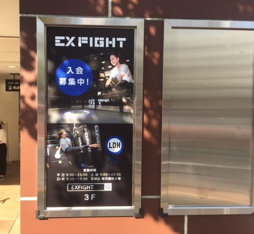 exfight 看板